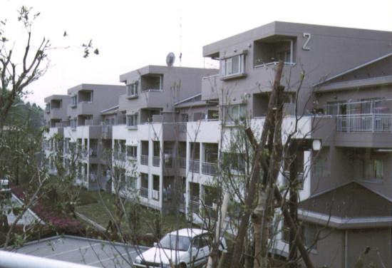 1992midorityou