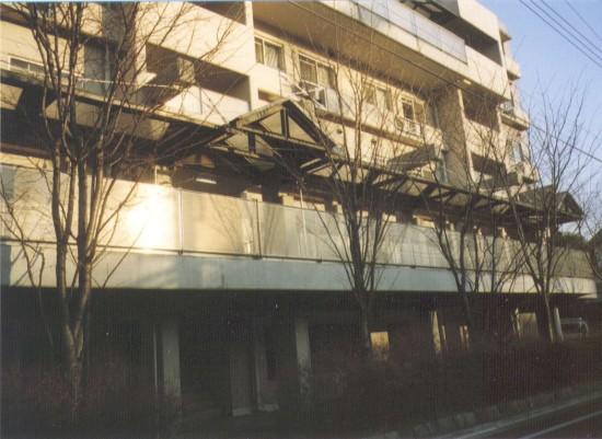 1994hino